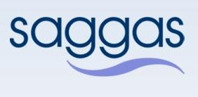 logo saggas
